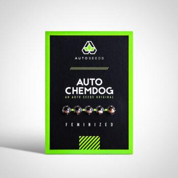 Auto Chemdog Seeds