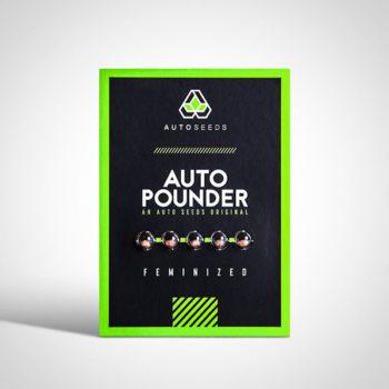 Auto Pounder Seeds