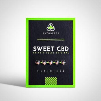Sweet CBD Seeds