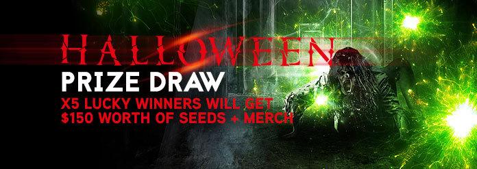 Auto seeds prize draw
